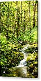 Green River No2 Acrylic Print by Weston Westmoreland