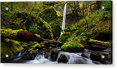 Green Seasons Acrylic Print