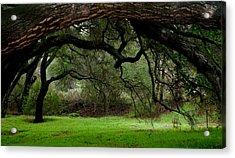 Green Serenity Acrylic Print