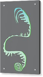 Green Spiral Evolution Acrylic Print by Kevin McLaughlin