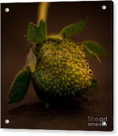 Green Strawberry Square Acrylic Print by Patricia Bainter