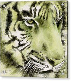 Green Tiger Acrylic Print by Summer Celeste