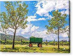 Green Wagon And Vineyard Acrylic Print by Jess Kraft