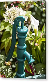 Green Water Pump Acrylic Print by Garry Gay