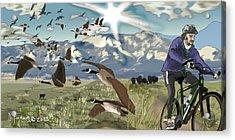 Greenbelt Plateau Boulder Co Acrylic Print