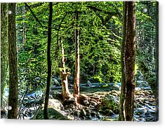 Greenbriar Landscape Acrylic Print by Barry Jones