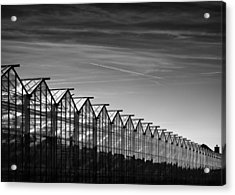 Greenhouses And Vapour Trails Acrylic Print by Dave Bowman