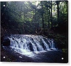 Greenstone Falls Acrylic Print by Tim Hawkins