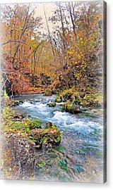 Greer Spring In Fall Acrylic Print by Marty Koch
