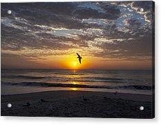 Greeting The Dawn Acrylic Print