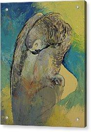 Grey Parrot Acrylic Print