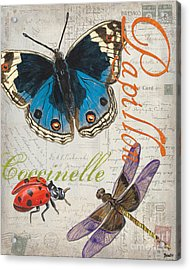 Grey Postcard Butterflies 4 Acrylic Print by Debbie DeWitt
