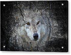 Grey Stone Acrylic Print