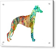 Greyhound  Acrylic Print by Luke and Slavi