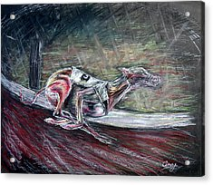 Greyhound Number Three Acrylic Print by Tom Conway