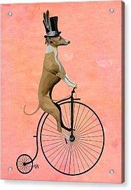 Greyhound Pennyfarthing Black Acrylic Print