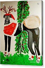 Greyhound Santa Acrylic Print by Marie Bulger