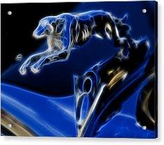 Greyhound V8 Acrylic Print