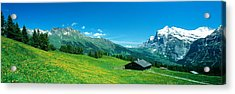 Grindelwald Switzerland Acrylic Print by Panoramic Images