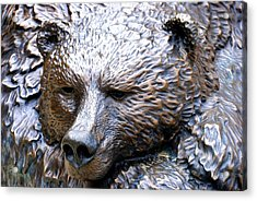 Grizzly Bear 2 Acrylic Print