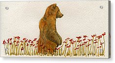 Grizzly Brown Bear Flowers Acrylic Print