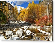 Acrylic Print featuring the photograph Grizzly Creek Canyon by Jeremy Rhoades