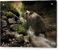 Grizzly Creek Acrylic Print by Roy  McPeak