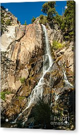 Grizzly Falls 1-7773 Acrylic Print