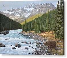 Grizzly Rapids Acrylic Print