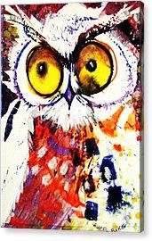 Groucho Owl Acrylic Print