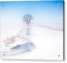 Ground Blizzard Acrylic Print