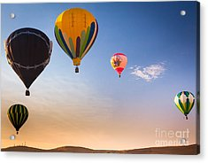 Group Of Balloons Acrylic Print