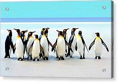 Group Of Penguins Acrylic Print by Helen Stapleton