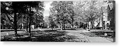 Group Of People At A University Campus Acrylic Print by Panoramic Images