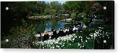 Group Of People Sitting On Benches Acrylic Print