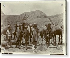 Group Posed With Camels Acrylic Print by British Library