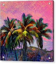 Grove Of Coconut Trees - Square Acrylic Print