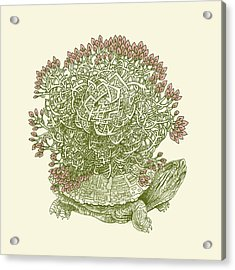 Grow Acrylic Print by Eric Fan