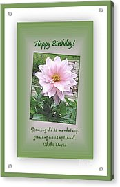 Growing Old Is Optional Acrylic Print by Leone Lund