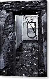 Growing Out Of Ruin Acrylic Print by Mike  Dawson