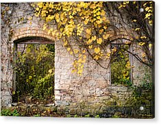 Acrylic Print featuring the photograph Growth Industry by Mark David Zahn Photography