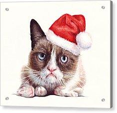 Grumpy Cat As Santa Acrylic Print by Olga Shvartsur