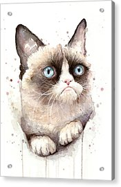 Grumpy Cat Watercolor Acrylic Print by Olga Shvartsur