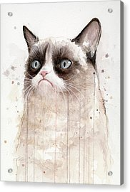 Grumpy Watercolor Cat Acrylic Print by Olga Shvartsur