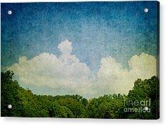 Grunge Background With Landscape Acrylic Print by Mythja  Photography