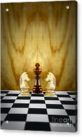Guardian Concept Acrylic Print by Colin and Linda McKie