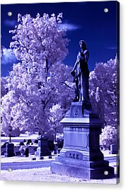Acrylic Print featuring the photograph Guardian by David Stine