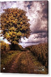 Guardian Of The Field Acrylic Print