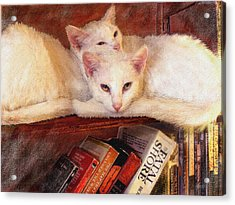 Guardians Of The Library Acrylic Print by Jane Schnetlage