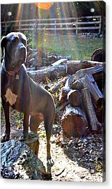 Acrylic Print featuring the photograph Guarding The Kingdom by Carlee Ojeda